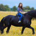 Horse riding & Spanish Horses